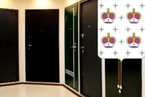 металлические двери белые с зеркалом дмитров